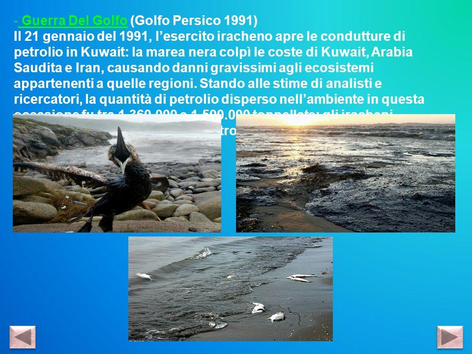 Guerra Del Golfo (Golfo Persico 1991)