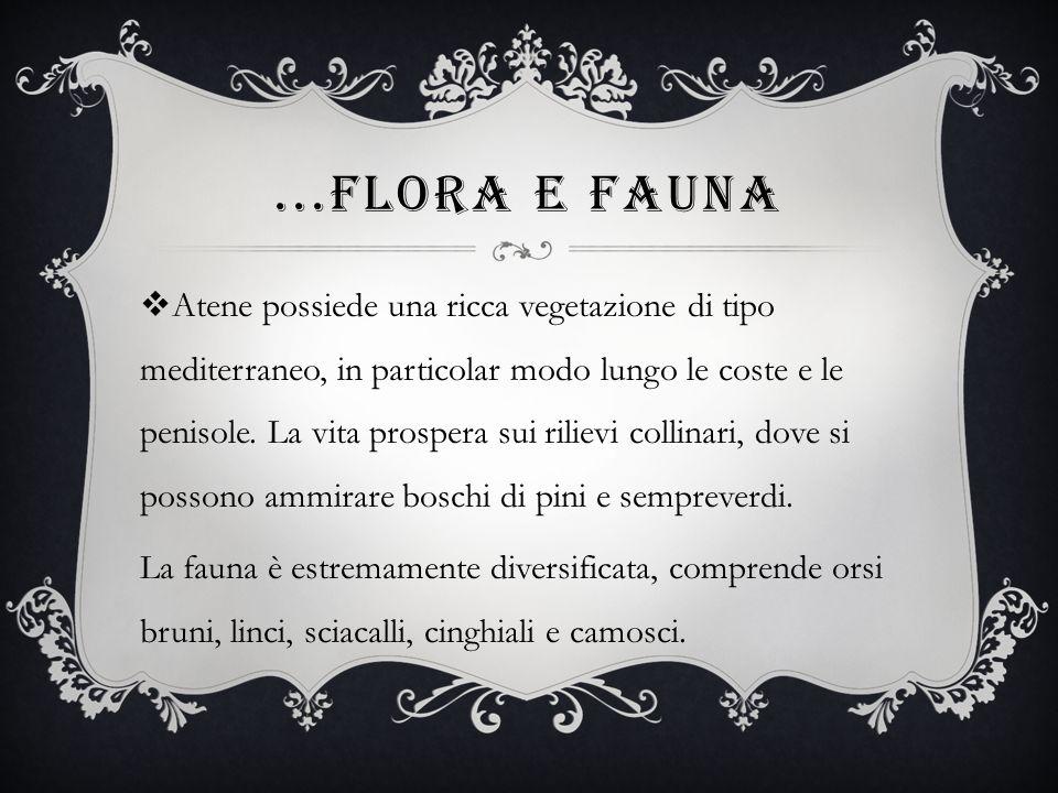...Flora e fauna