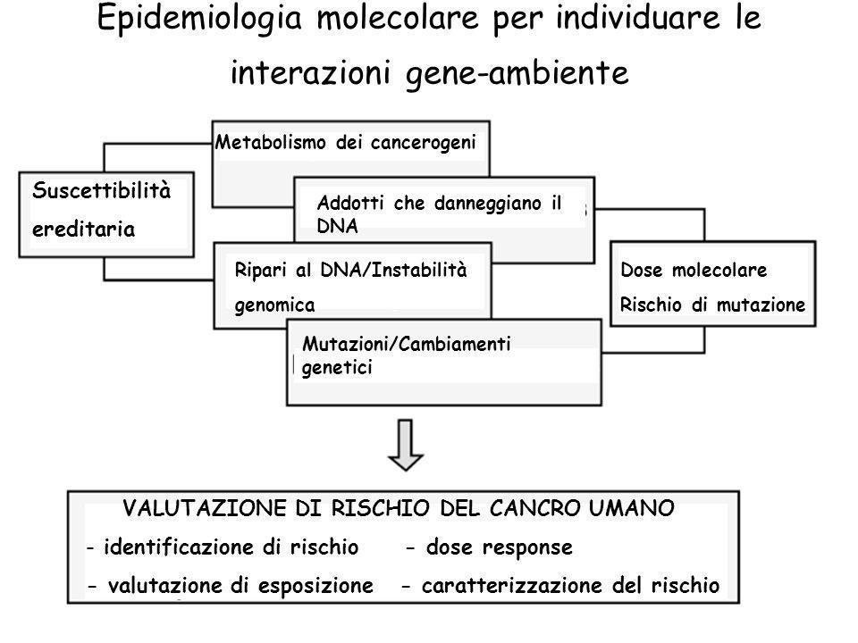 Epidemiologia molecolare per individuare le interazioni gene-ambiente