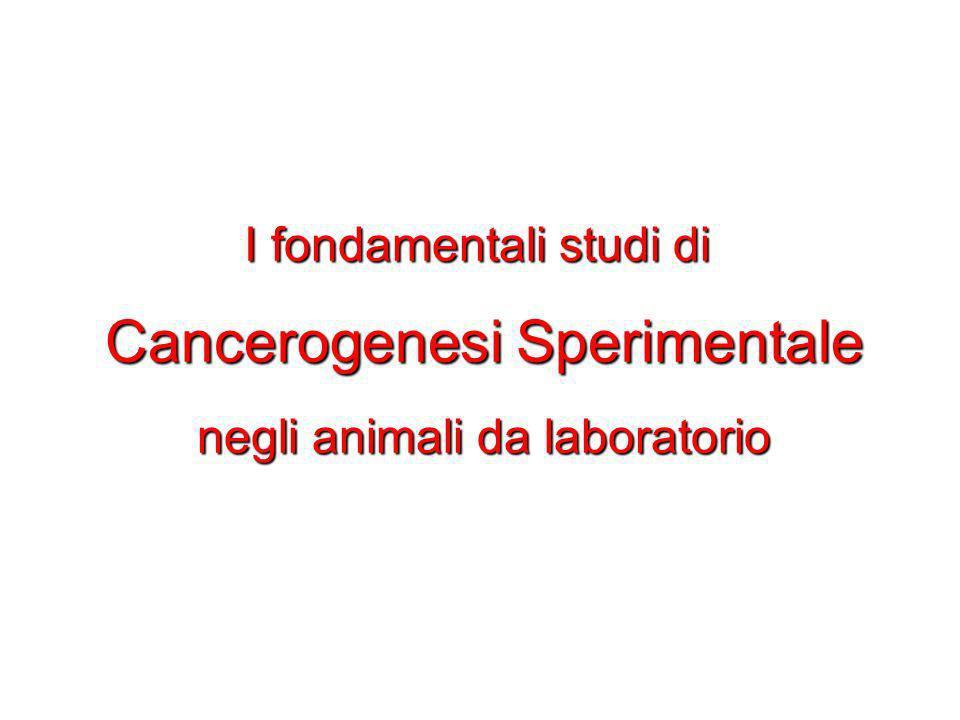 Cancerogenesi Sperimentale