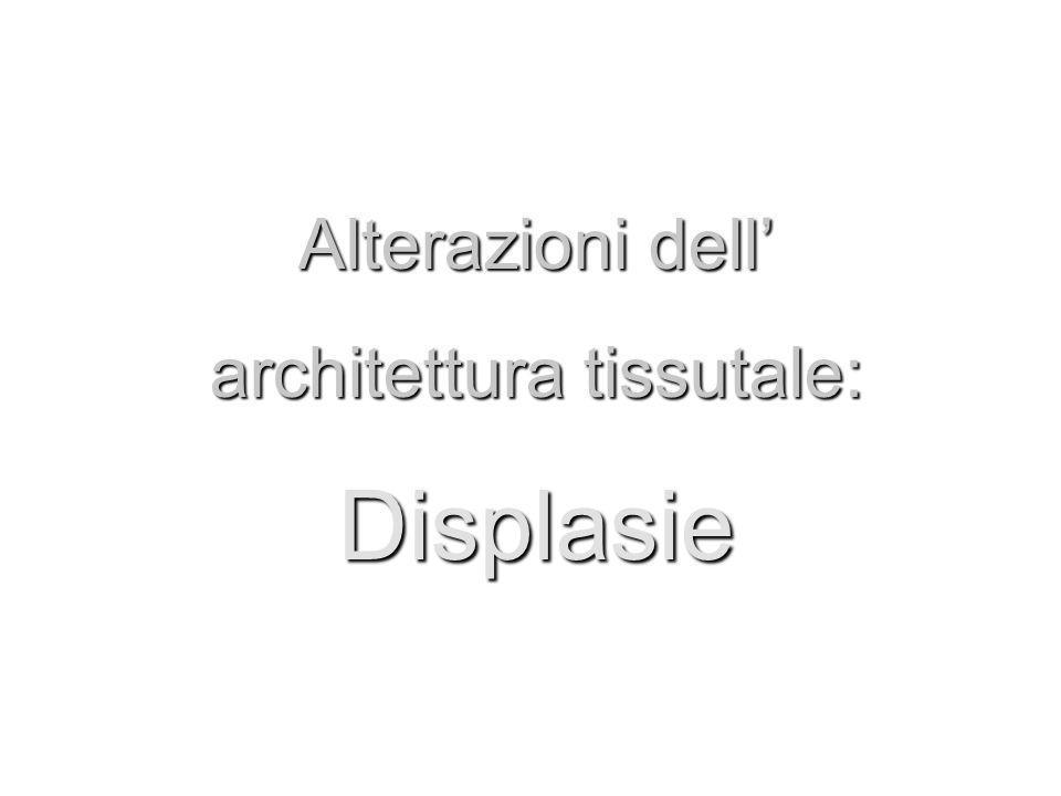architettura tissutale: