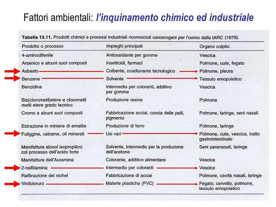Fattori ambientali: l'inquinamento chimico ed industriale