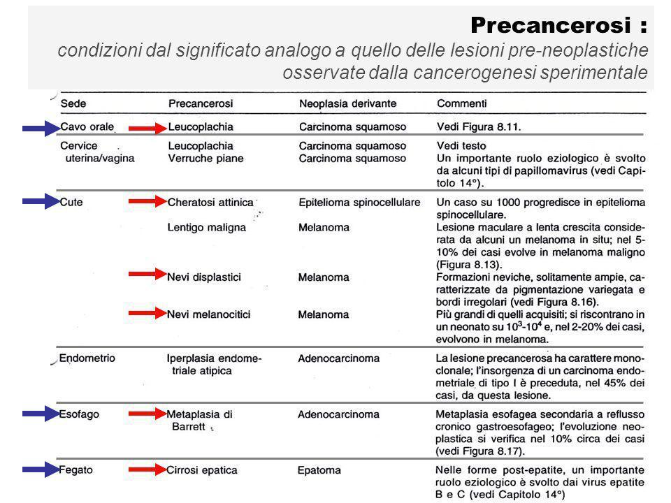 Precancerosi :condizioni dal significato analogo a quello delle lesioni pre-neoplastiche.