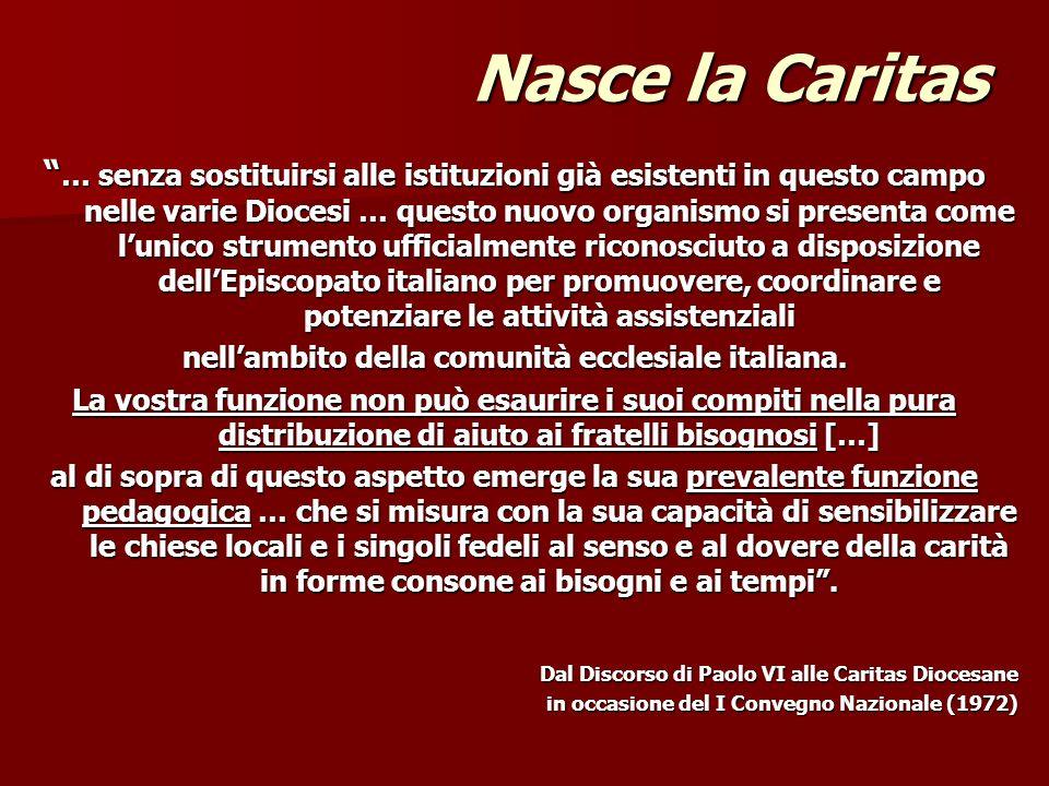 nell'ambito della comunità ecclesiale italiana.