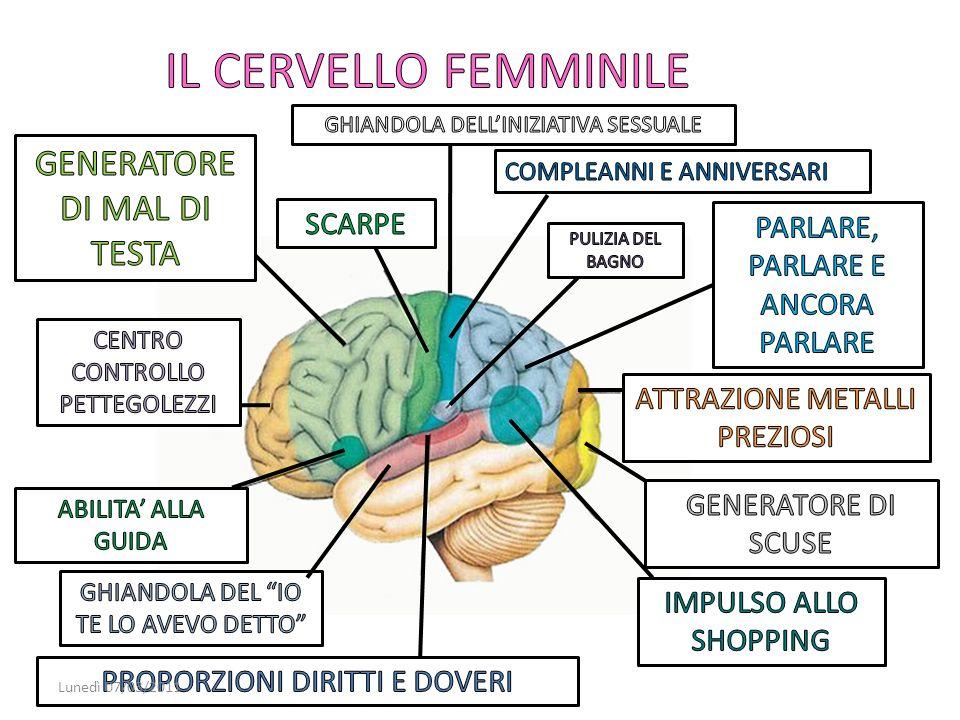 IL CERVELLO FEMMINILE GENERATORE DI MAL DI TESTA SCARPE