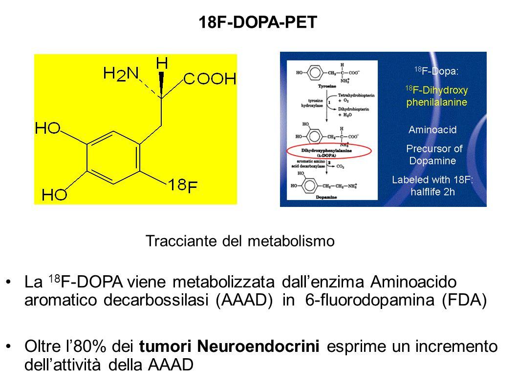 18F-DOPA-PET Tracciante del metabolismo.