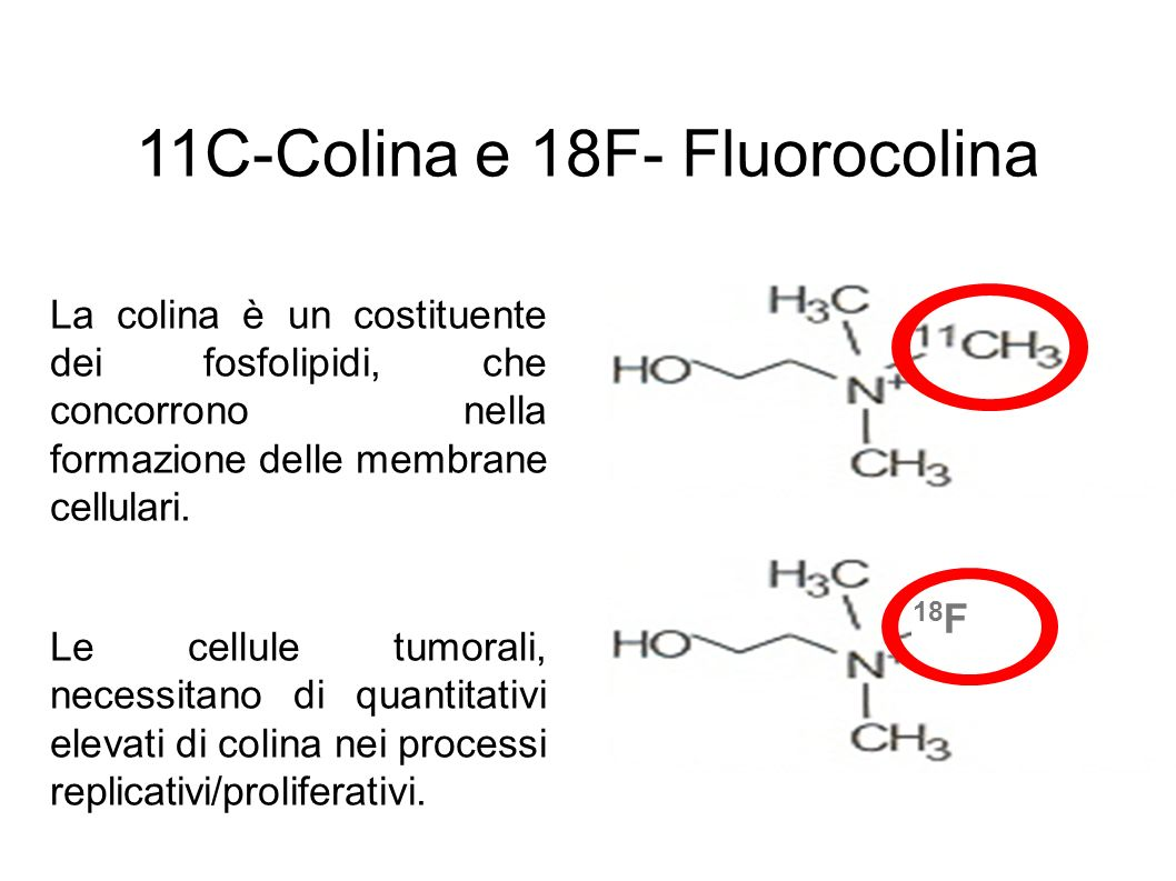 11C-Colina e 18F- Fluorocolina