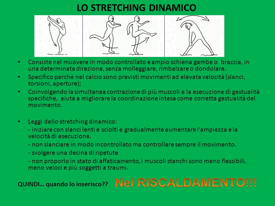 LO STRETCHING DINAMICO