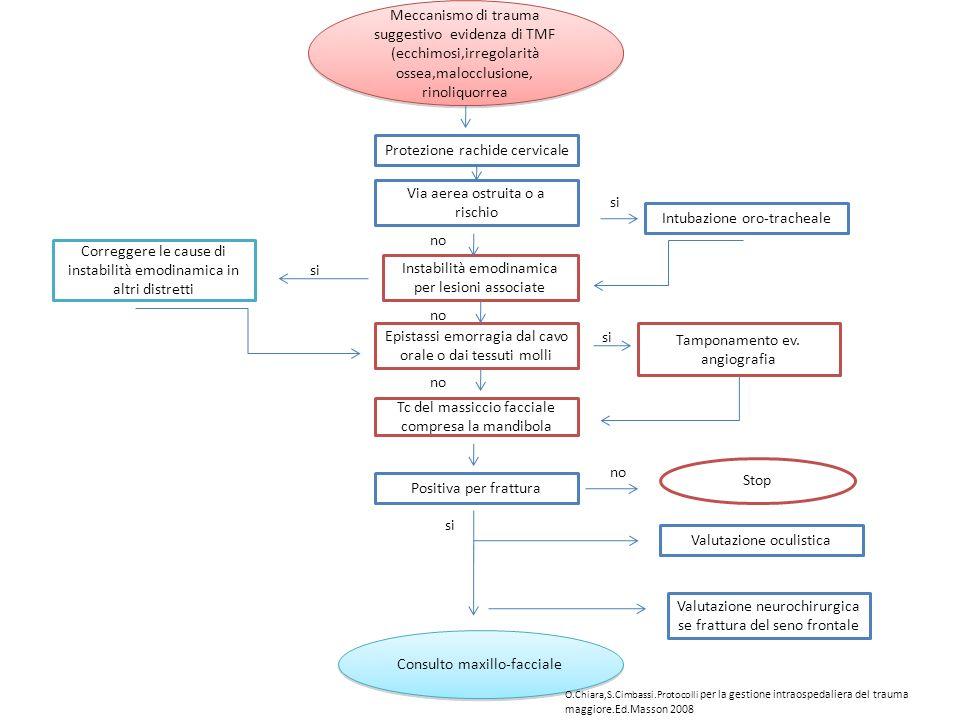 Protezione rachide cervicale