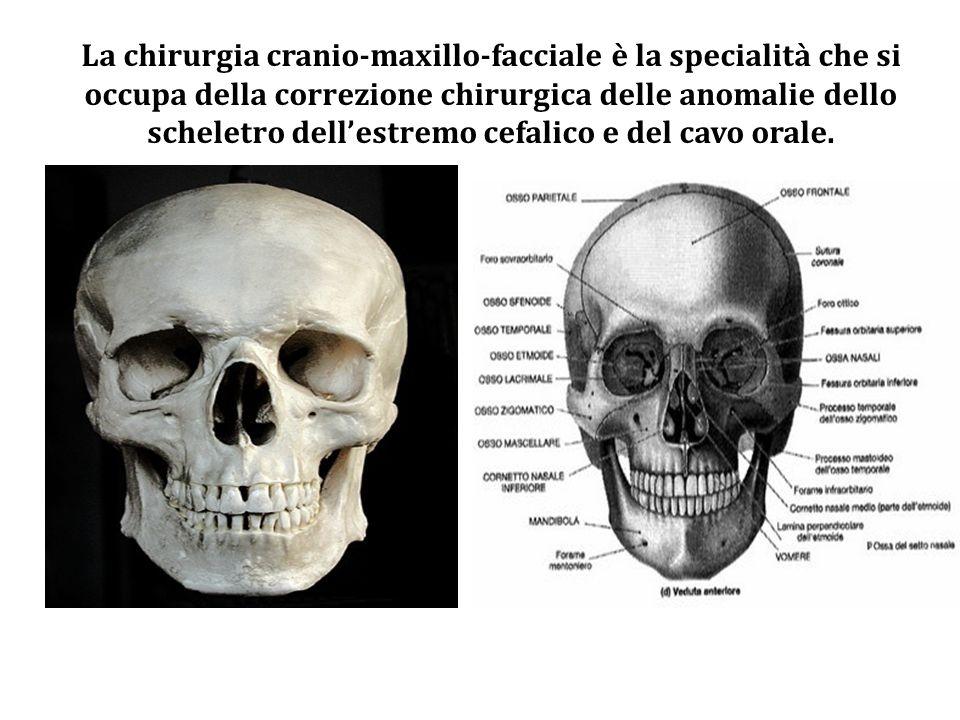 La chirurgia cranio-maxillo-facciale è la specialità che si occupa della correzione chirurgica delle anomalie dello scheletro dell'estremo cefalico e del cavo orale.