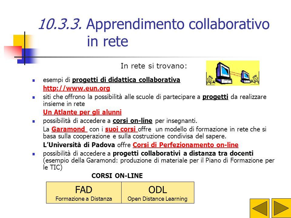 10.3.3. Apprendimento collaborativo in rete