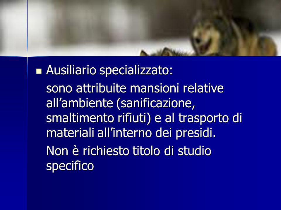 Ausiliario specializzato:
