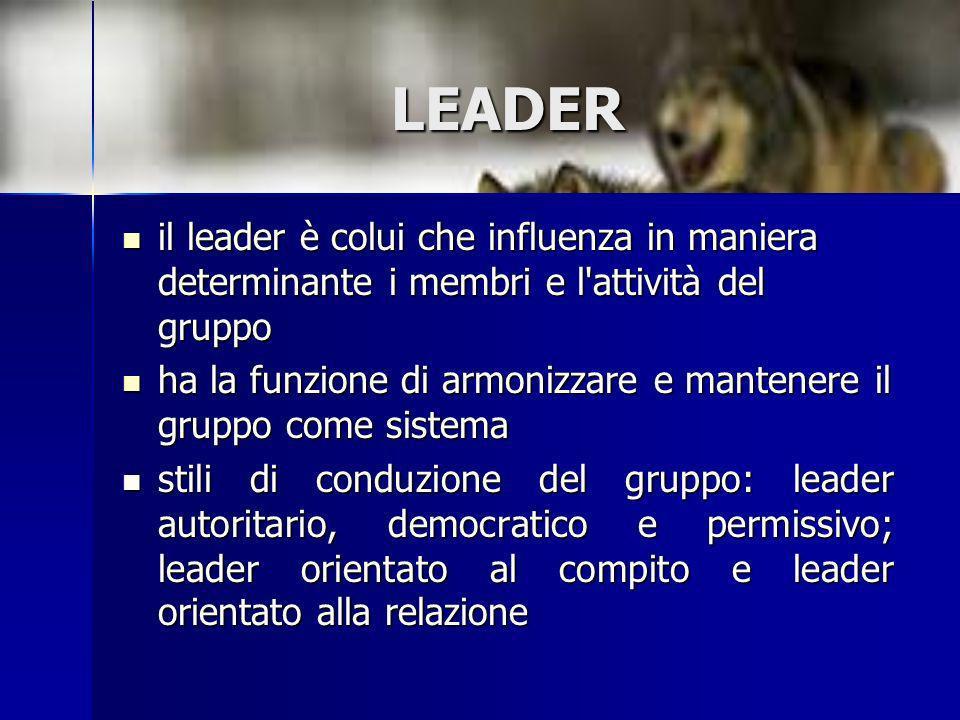 LEADER il leader è colui che influenza in maniera determinante i membri e l attività del gruppo.