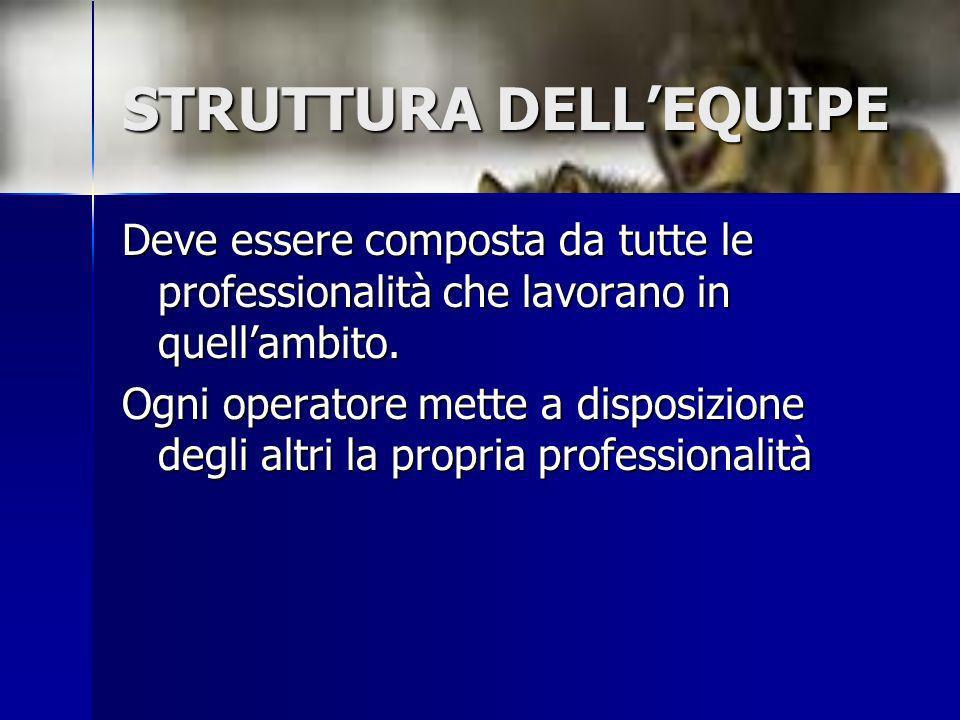 STRUTTURA DELL'EQUIPE