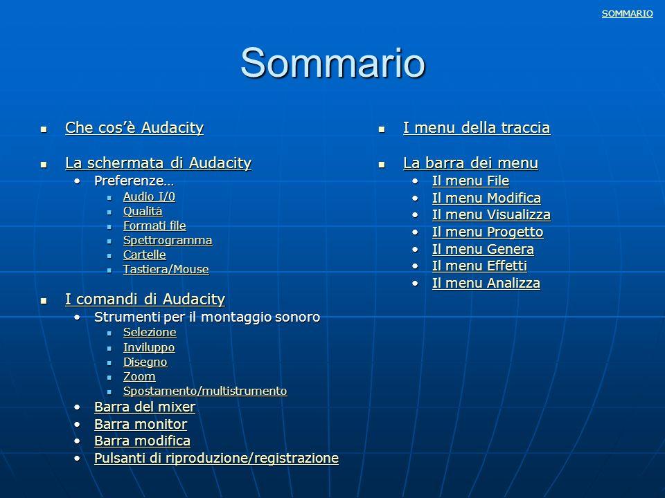Sommario Che cos'è Audacity La schermata di Audacity