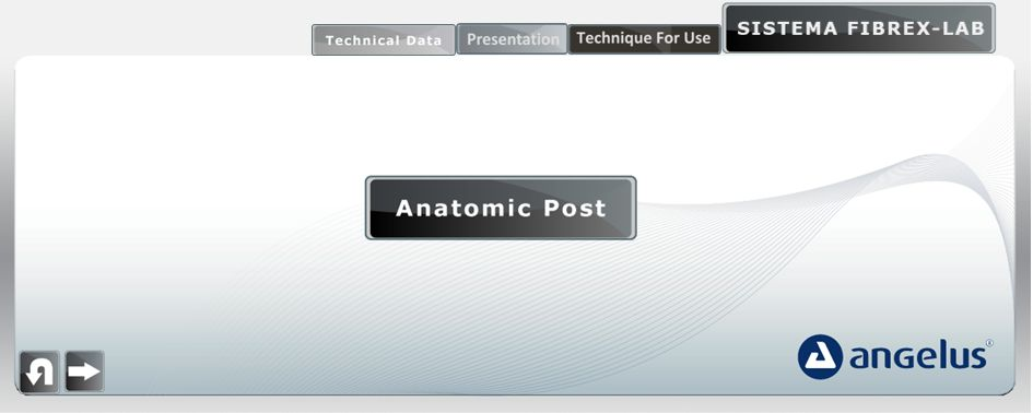Anatomic Pin