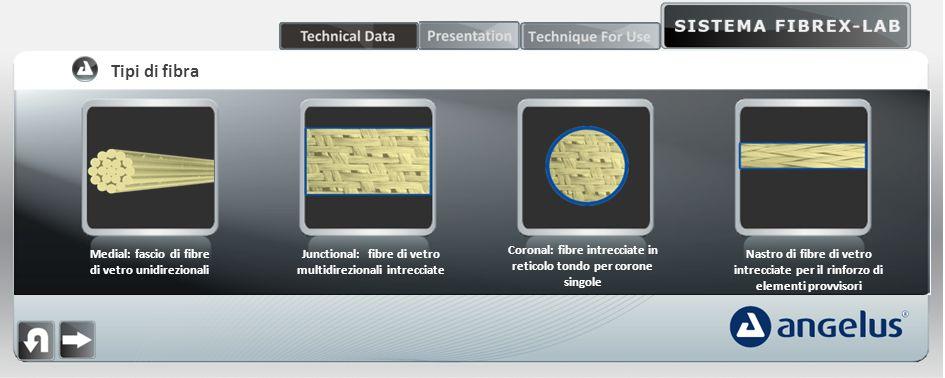 Tipi di fibra Medial: fascio di fibre di vetro unidirezionali