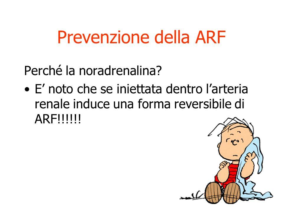 Prevenzione della ARF Perché la noradrenalina