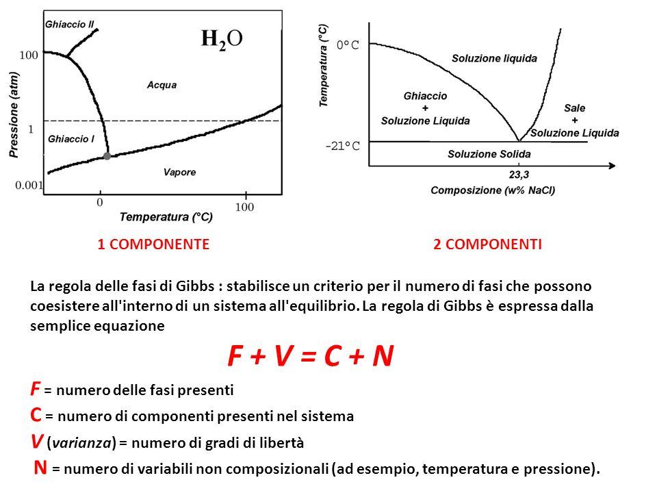 F + V = C + N F = numero delle fasi presenti