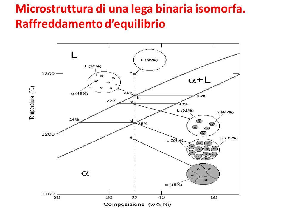 Microstruttura di una lega binaria isomorfa