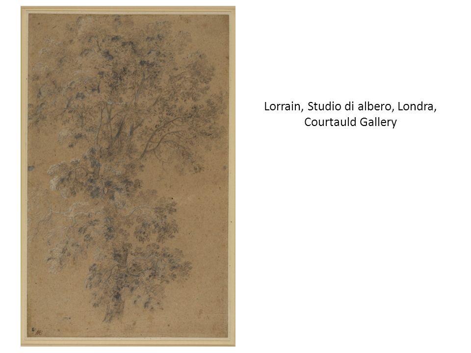 Lorrain, Studio di albero, Londra, Courtauld Gallery
