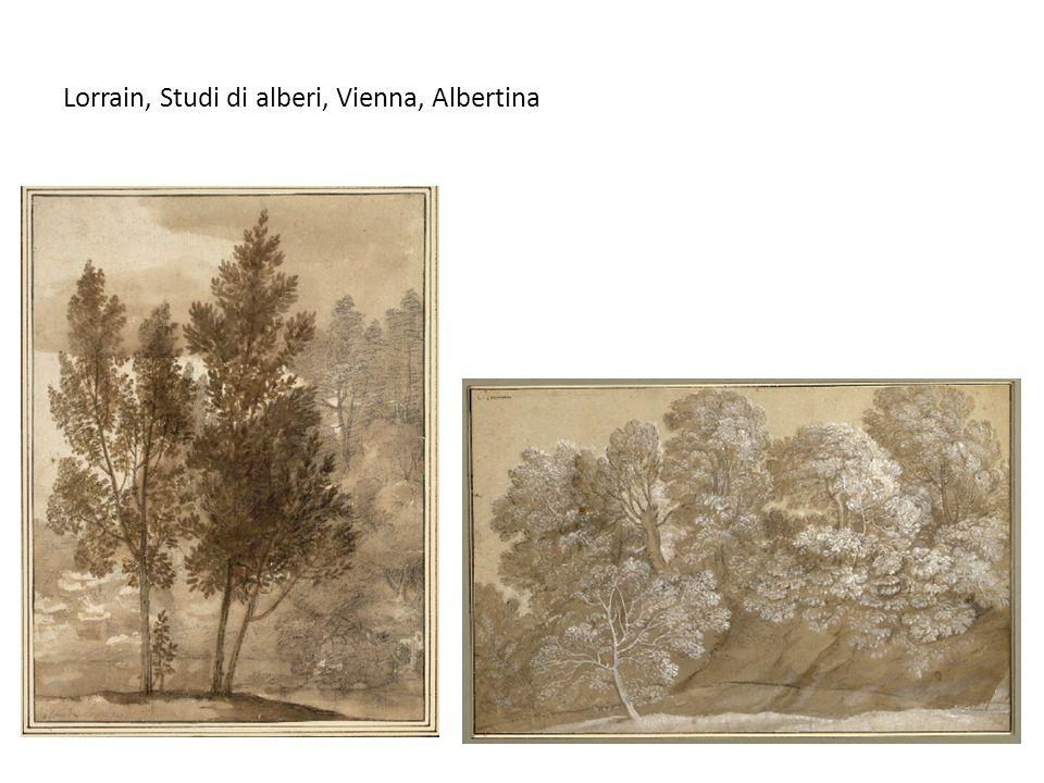 Lorrain, Studi di alberi, Vienna, Albertina