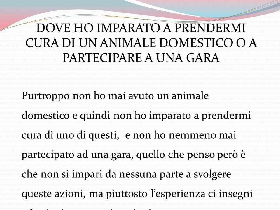 DOVE HO IMPARATO A PRENDERMI CURA DI UN ANIMALE DOMESTICO O A PARTECIPARE A UNA GARA