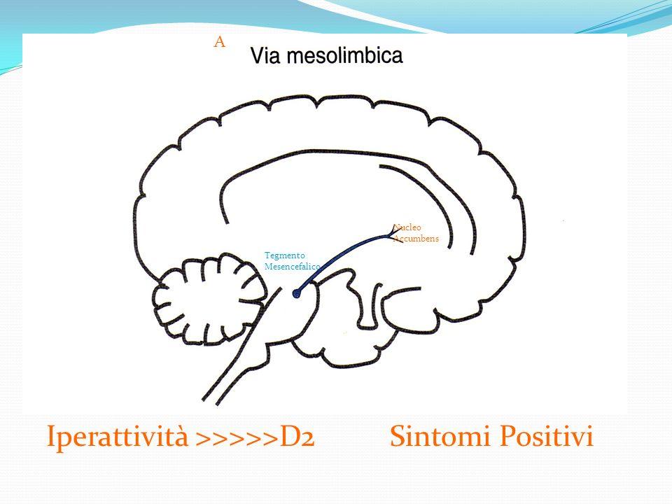 Iperattività >>>>>D2 Sintomi Positivi