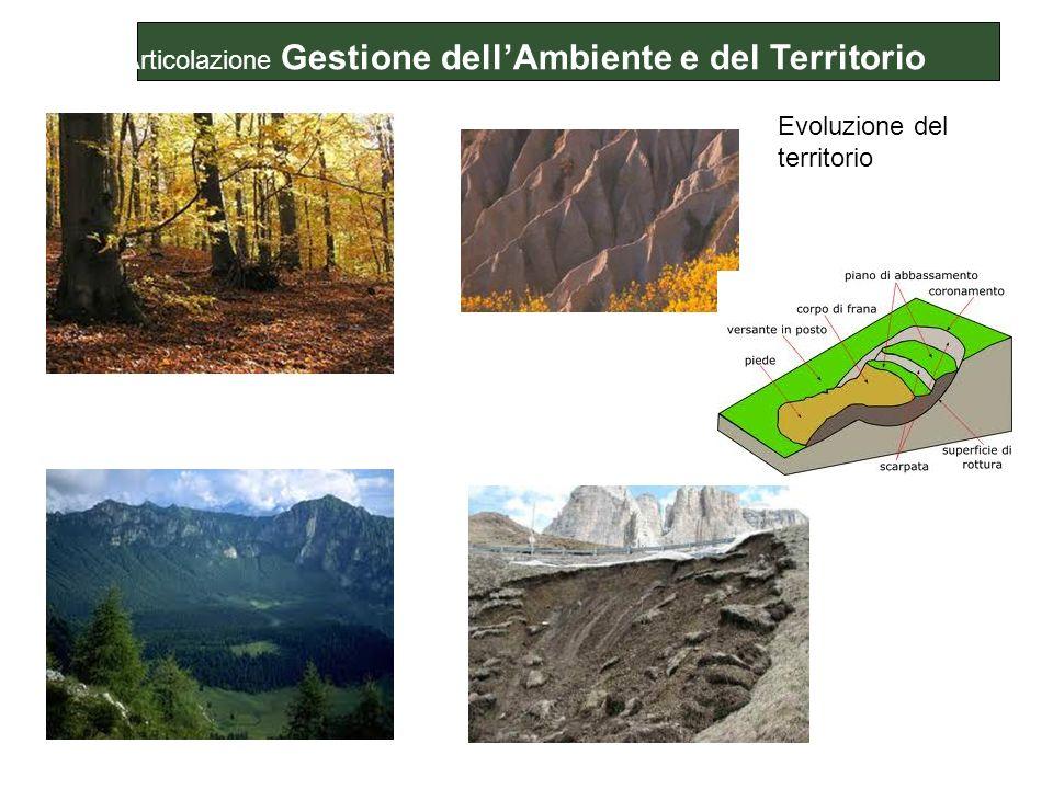 Articolazione Gestione dell'Ambiente e del Territorio