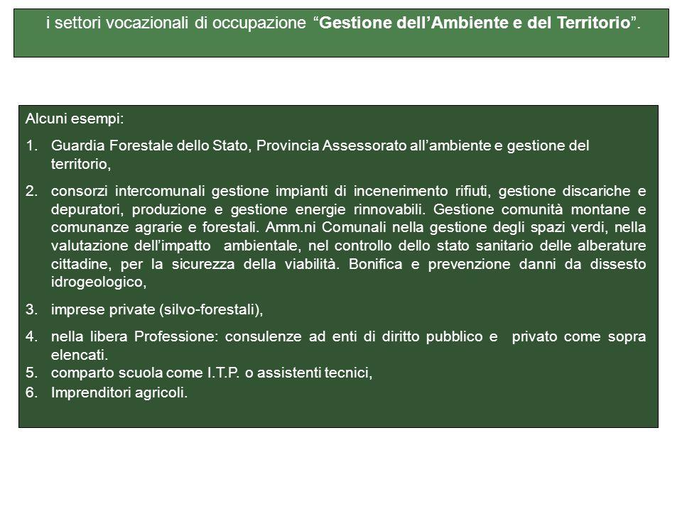 i settori vocazionali di occupazione Gestione dell'Ambiente e del Territorio .