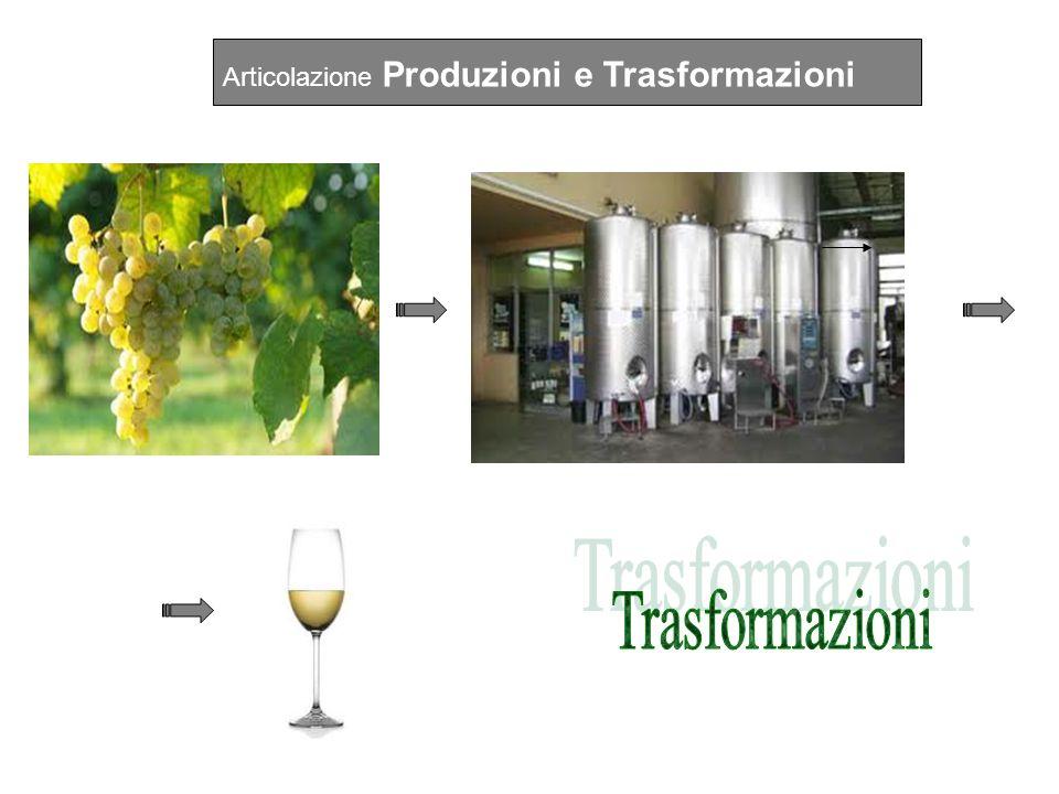 Articolazione Produzioni e Trasformazioni