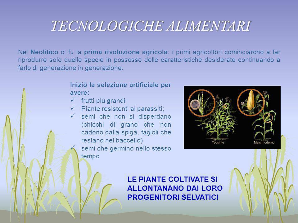 TECNOLOGICHE ALIMENTARI