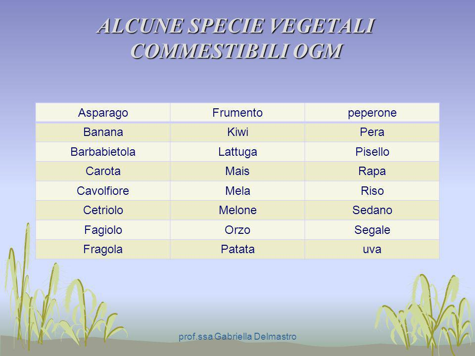 ALCUNE SPECIE VEGETALI COMMESTIBILI OGM