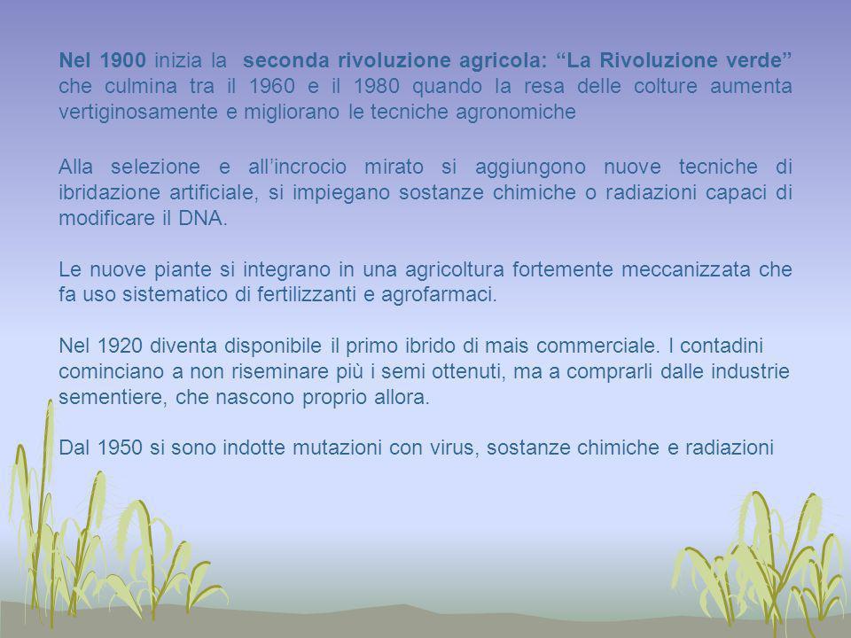 Nel 1900 inizia la seconda rivoluzione agricola: La Rivoluzione verde che culmina tra il 1960 e il 1980 quando la resa delle colture aumenta vertiginosamente e migliorano le tecniche agronomiche
