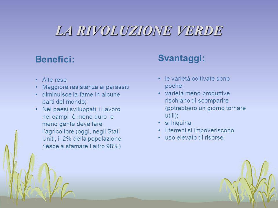 LA RIVOLUZIONE VERDE Svantaggi: Benefici: