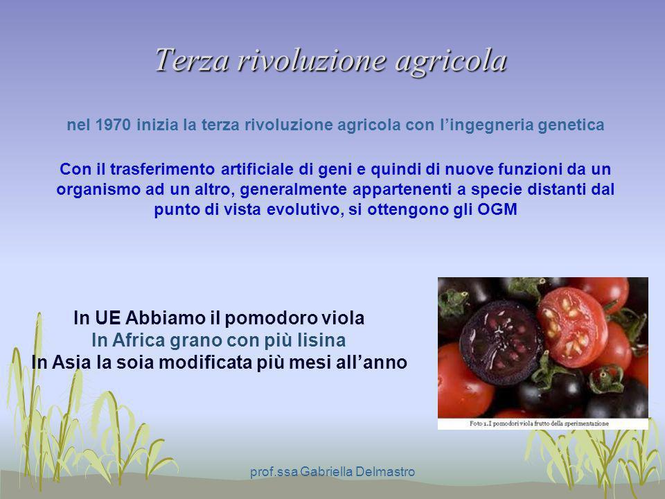 Terza rivoluzione agricola