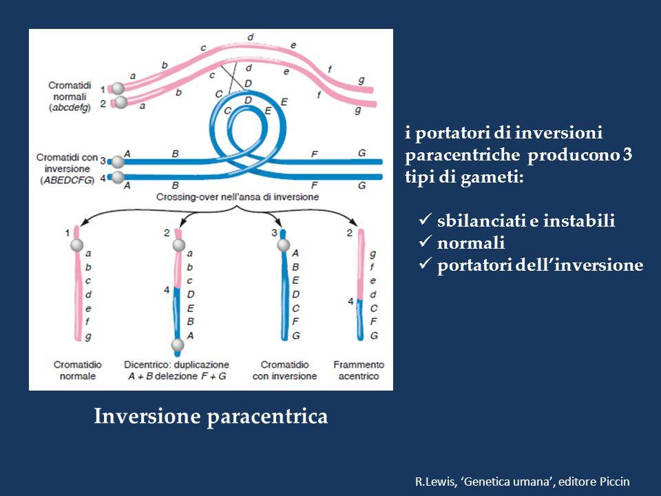 Inversione paracentrica