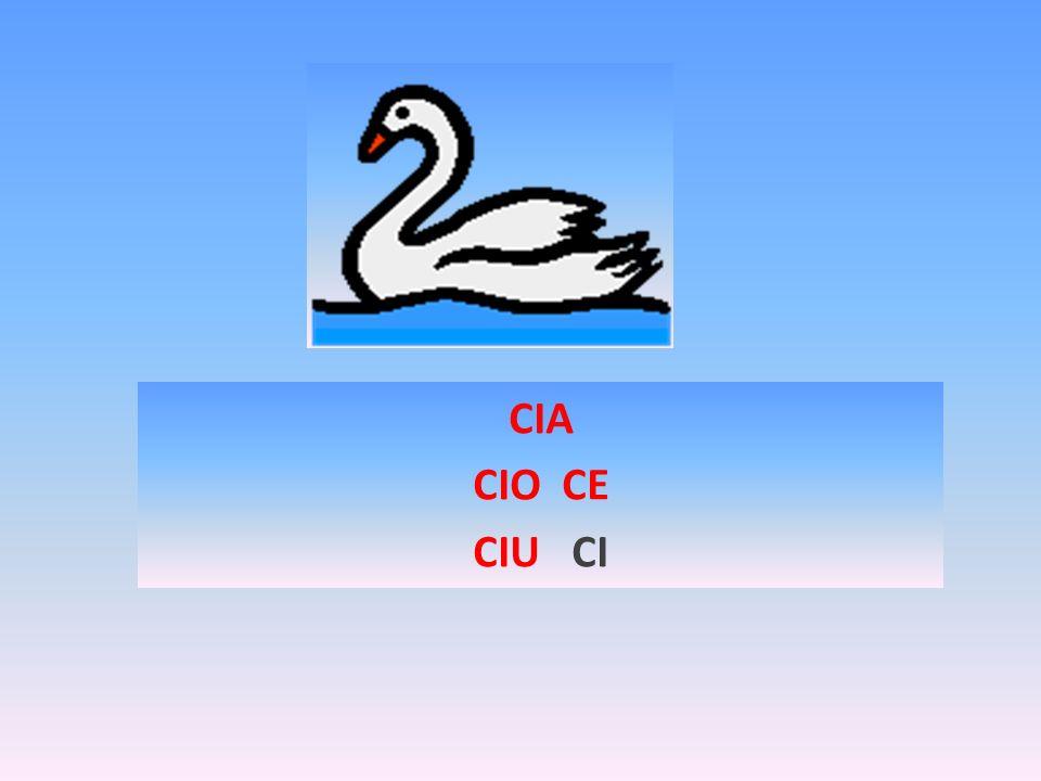 CIA CIO CE CIU CI
