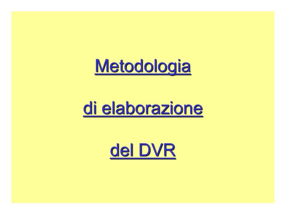 Metodologia di elaborazione del DVR