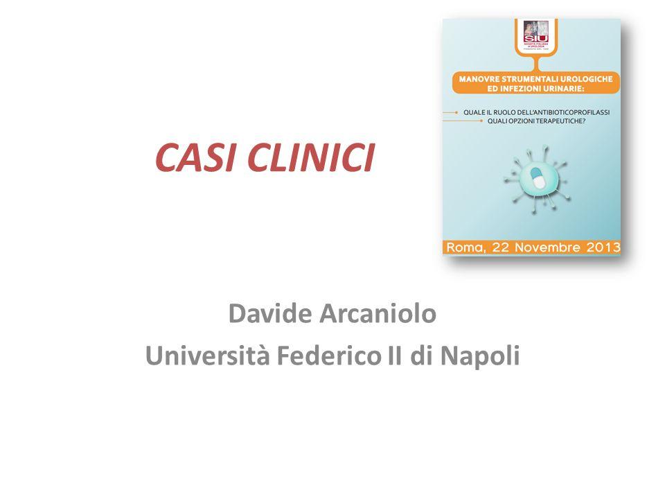 Davide Arcaniolo Università Federico II di Napoli