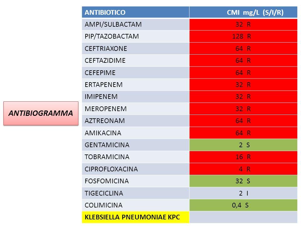 ANTIBIOGRAMMA ANTIBIOTICO CMI mg/L (S/I/R) AMPI/SULBACTAM 32 R