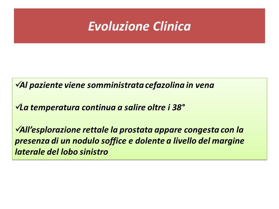 Evoluzione Clinica Al paziente viene somministrata cefazolina in vena