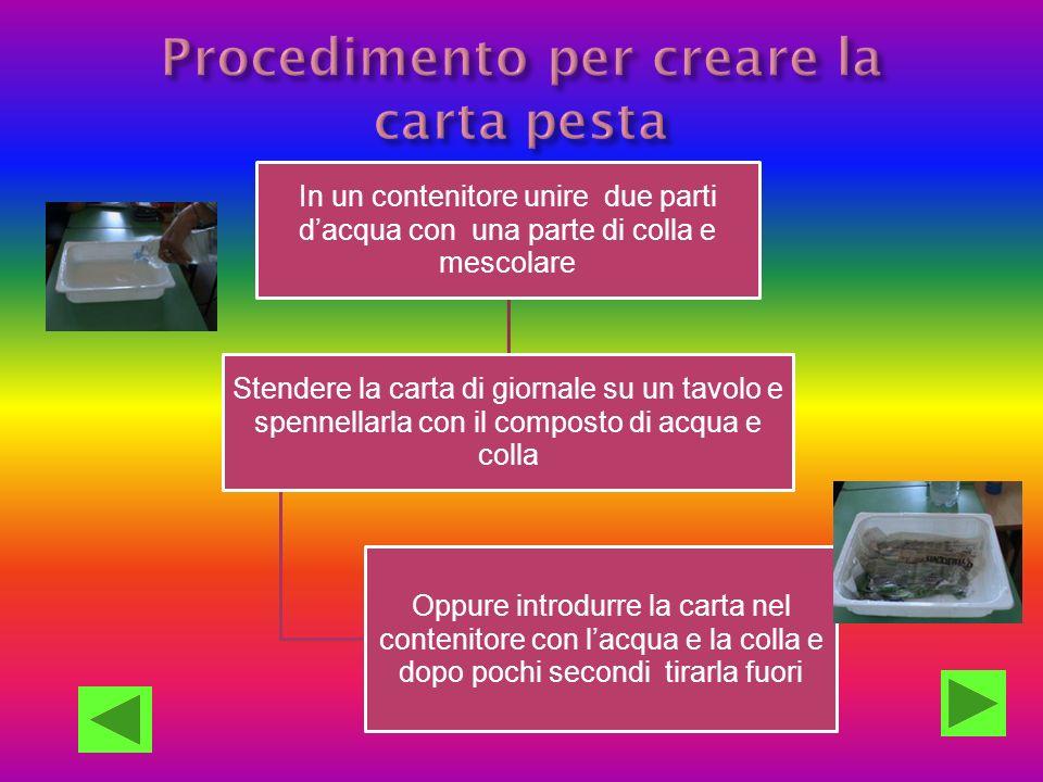 Procedimento per creare la carta pesta