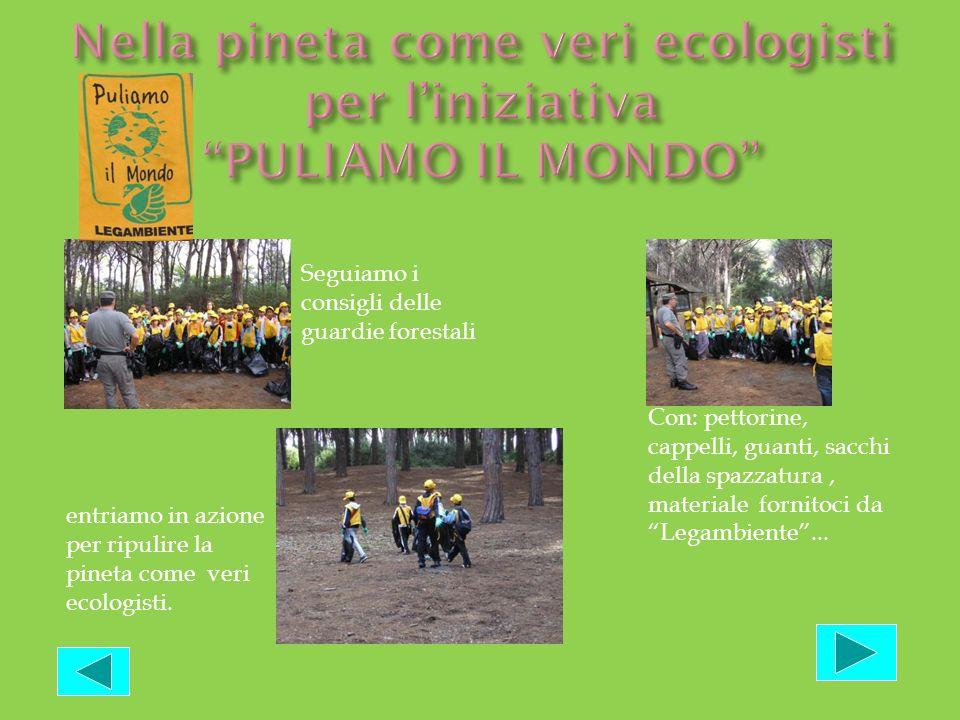 Nella pineta come veri ecologisti per l'iniziativa PULIAMO IL MONDO