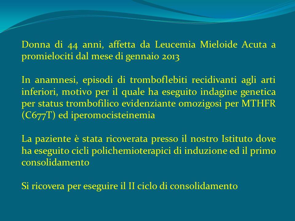Donna di 44 anni, affetta da Leucemia Mieloide Acuta a promielociti dal mese di gennaio 2013