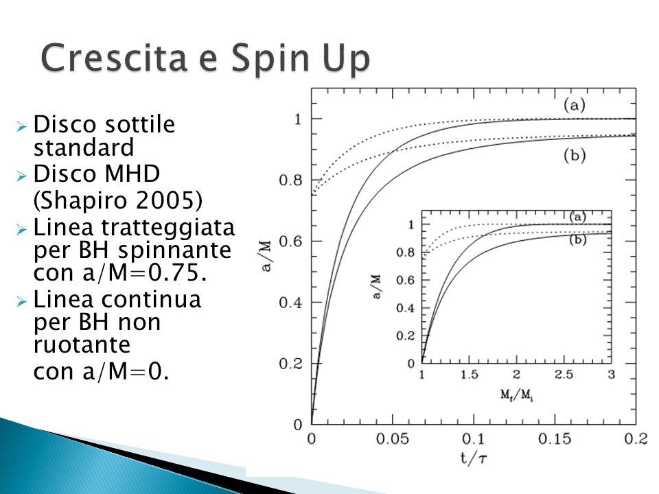 Crescita e Spin Up Disco sottile standard Disco MHD (Shapiro 2005)