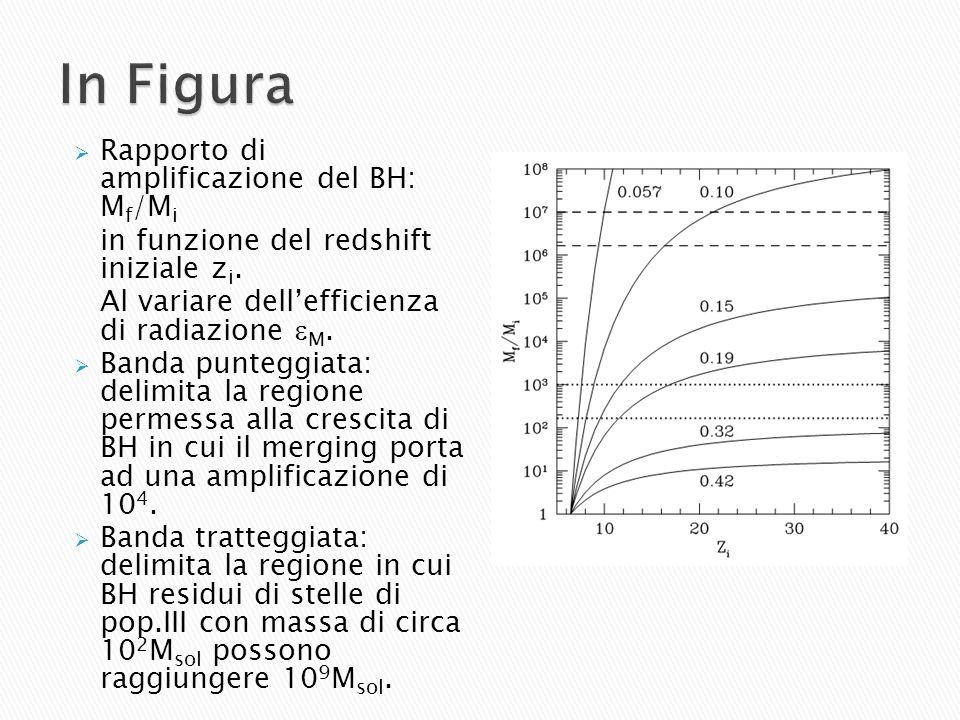 In Figura Rapporto di amplificazione del BH: Mf/Mi