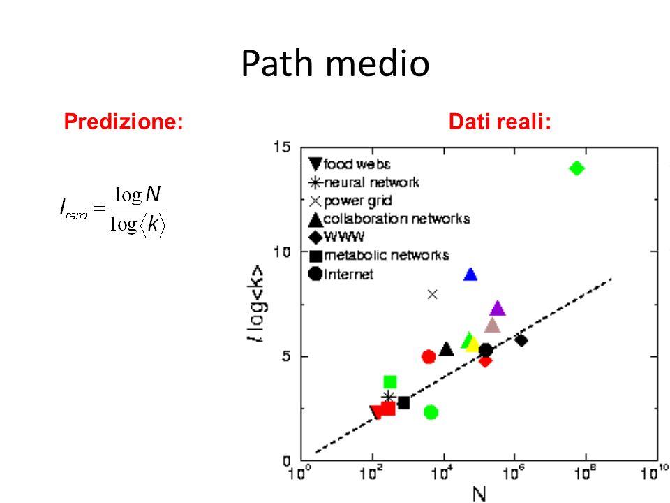 Path medio Predizione: Dati reali: