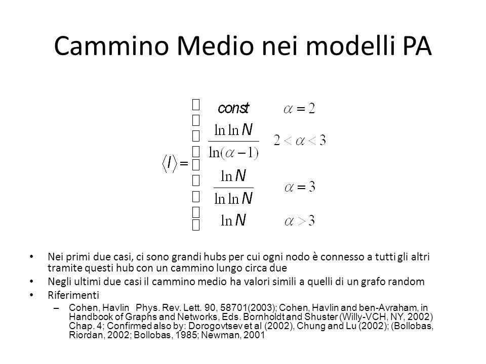 Cammino Medio nei modelli PA