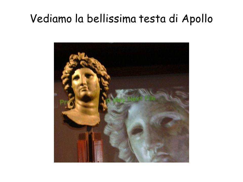 Vediamo la bellissima testa di Apollo